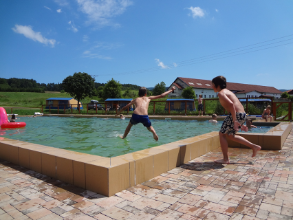 Nederlandse camping met zwembad