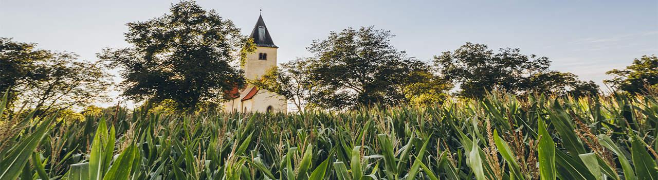 Kerkje Konopiste Praag