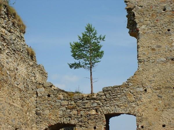 Ruine Divci Kamen