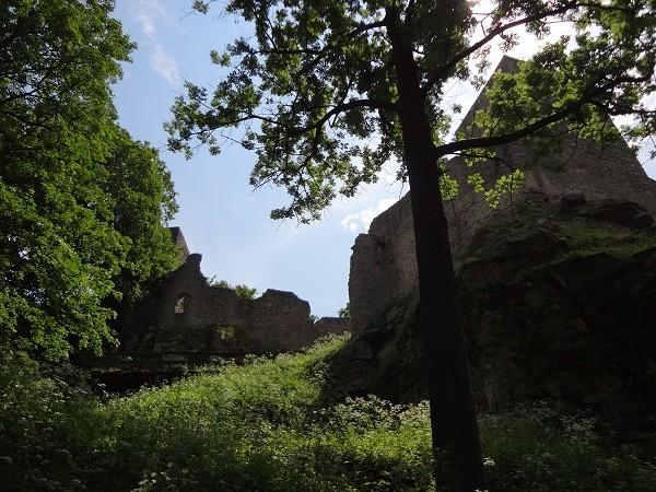 Ruine Choustnik