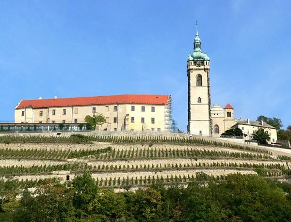 Wijnbouw Melnik Tsjechie